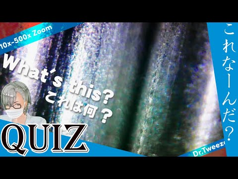 9004 [200x Zoom] QUIZ What is this? クイズ これ何だ? Dr. tweezers 毛抜き先生の角栓や毛根