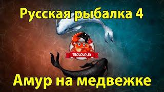 Русская рыбалка 4 Трофеи озера Медвежье