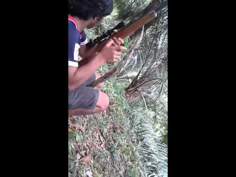 ปืนลม เบอร์ 1