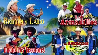 Dueto Bertin y Lalo, Dueto Los Tecolotes, Los Armadillos de la Sierra, Los Aguilillos de la Sierra