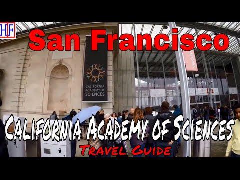 San Francisco   California Academy of Sciences   Tourist Attractions   Episode# 11