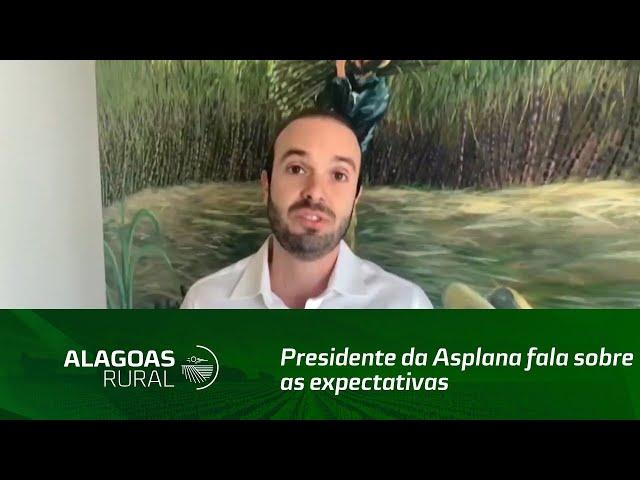 Presidente da Asplana fala sobre as expectativas para a safra de cana-de-açúcar, em Alagoas
