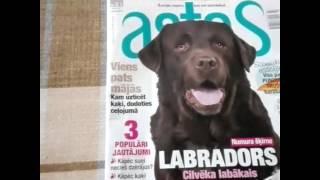 Просмотр журнала о животных..