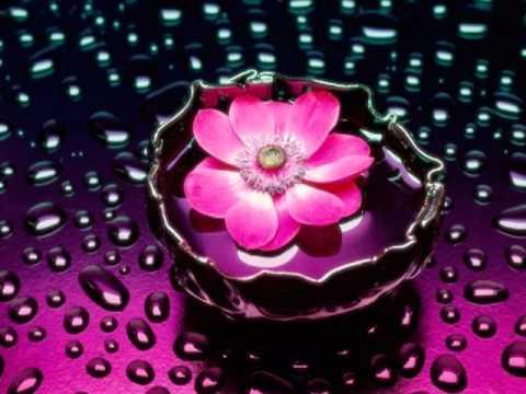 Playback- Rose Nascimento- Portões Celestiais