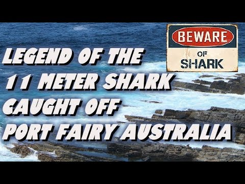 Legend Of The 11 Meter Shark Caught Off Port Fairy, Australia.