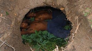 Build hidden house underground for three night in deep forest