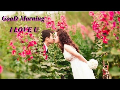 Good Morning Image Hd Wallpaper 3d Video Download Latest 2017 New Message Friend Quality Youtube