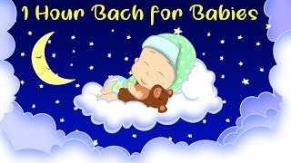 Bach Lullaby For Babies ♫  | Good Night Sleep Tight 😴 | 1 Hour Peaceful Lullaby For Bedtime