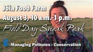 Field Day Sneak Peek: Jóia Food Farm, August 3