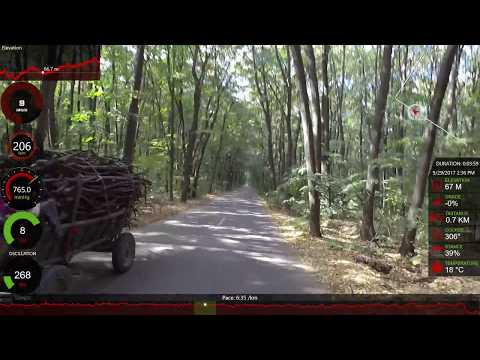 Running in Pustnicu Forest - Road Surface (Garmin Virb Ultra 30)
