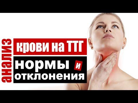 Анализ крови на ТТГ – тиреотропный гормон гипофиза, нормы и причины отклонений