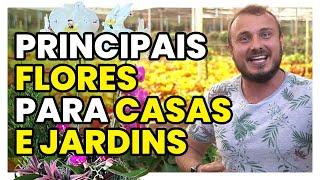 As Principais Flores Para se Ter em Casa Ou no Jardim
