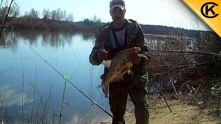 Ловля белой рыбы на червя. Рыбалка на донку без кормушки.
