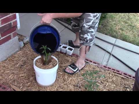 how to make the best compost youtube