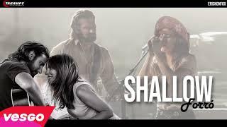 Baixar Lady Gaga Ft. Bradley Cooper  Shallow VERSÃO FORRÓ