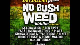 No bush Weed Riddim 2014 mix (Dj CashMoney) [SAZZAH STUDIO]
