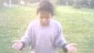 damar71