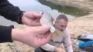 Речная и озерная рыбалка в Испании,  грибы и уха у озера