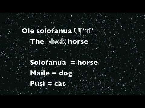 Samoan Language 101 - C Colors, Animals & Insects