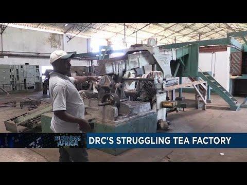 DRC's struggling tea factory [Business Africa]