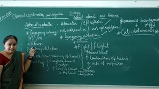 I PUC | Biology | Chemical coordination and integration-04