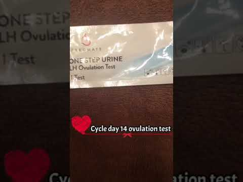 Vasectomy reversal/ cycle day 14 ovulation test.