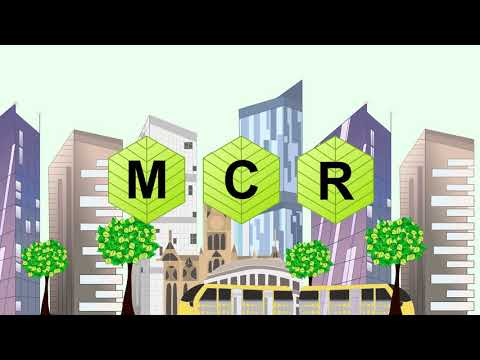 A New Leaf MCR (Promotional Material)