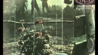 QUERIDOS CAMARADAS - BY GORI VIDAL