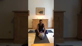 Yin Meridian Therapy earth and water, stomach and urinary bladder class