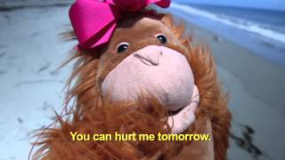 """Hurt Me Tomorrow"" (The Ballad of Smelly & Petunia) Lyric Video - K'NAAN"