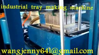 paper pulp forming egg box tray making machine industrial tray machine  0086-15153504975
