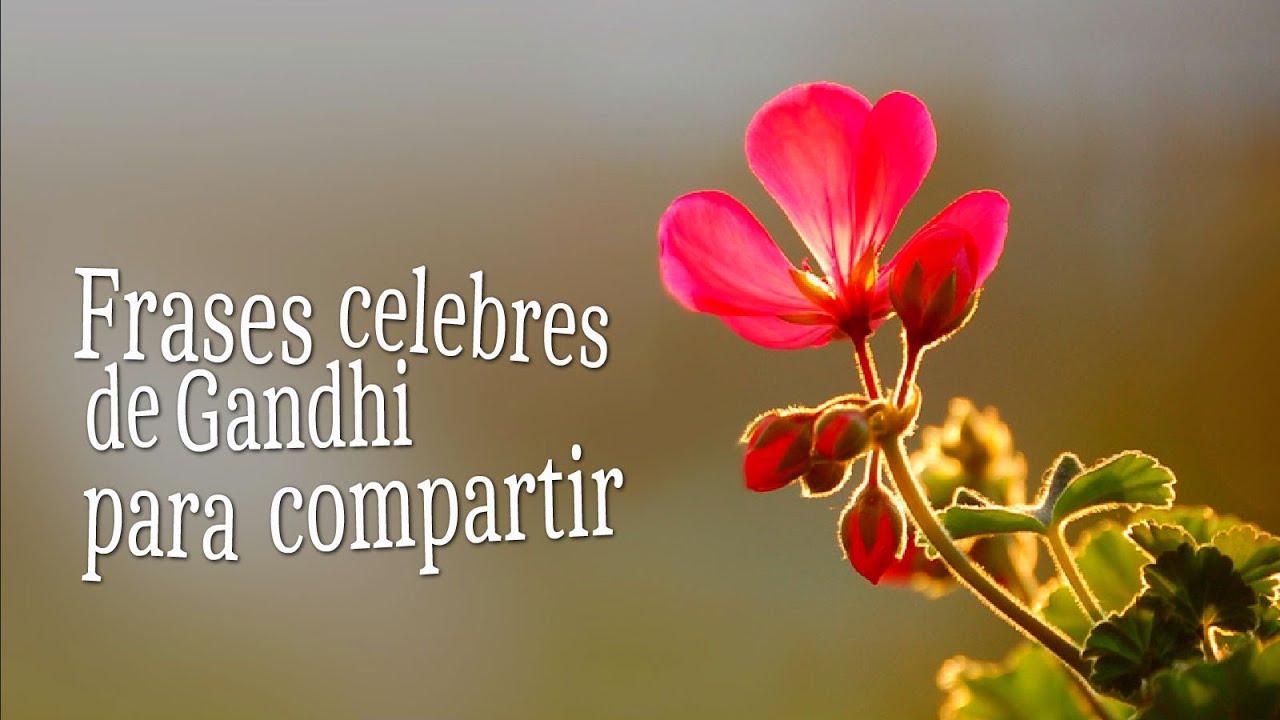 Frases Sobre La Vida: Frases Célebres Sobre La Vida