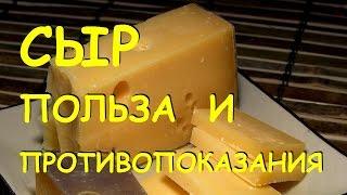 Сыр. Польза и вред.
