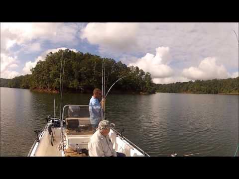 Best Day Of Striper Fishing CARTERS LAKE