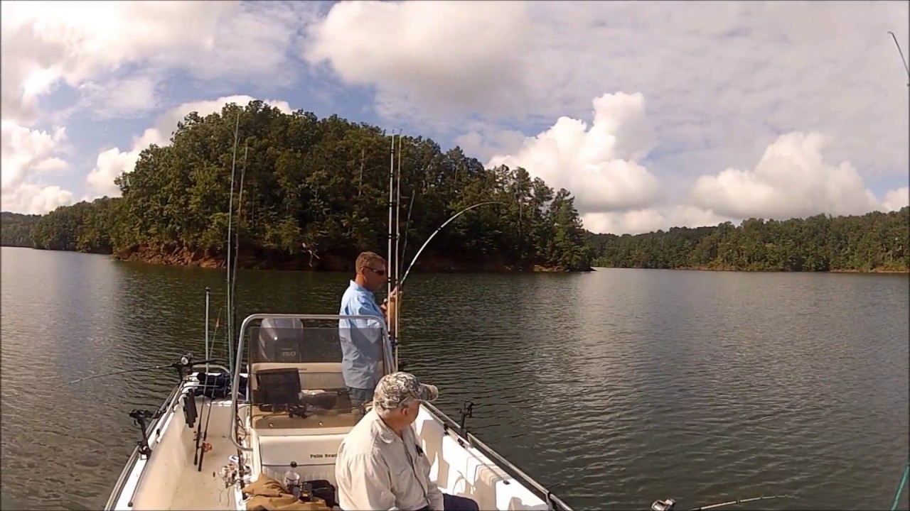 Best Day Of Striper Fishing Carters Lake Youtube