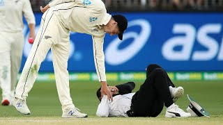 Umpire overturned as Aleem Dar takes a tumble