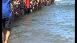 CAMPING BAIA VERDE RILASCIO DELLE TARTARUGHE 2012 07 15 AVI 720p.avi