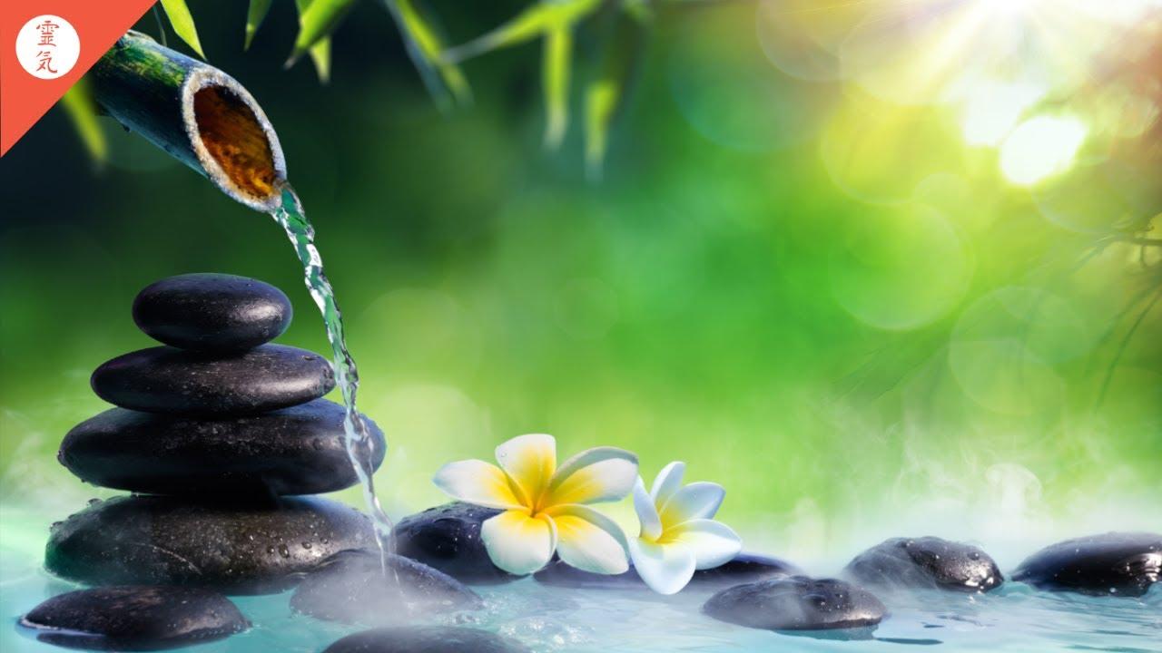 Download Reiki Music, Emotional & Physical Healing Music, Nature Sounds, Zen Meditation