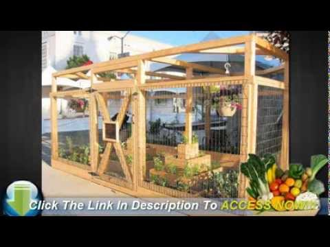 Vegetable Garden Layout   Companion Plants   YouTube