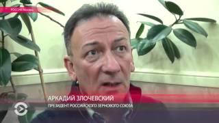 Невкусный хлеб России из фуражной пшеницы