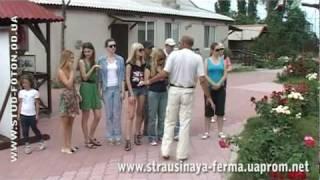"Страусиная ферма САВАННА. Лето 2010. Школа ""Гармония"""