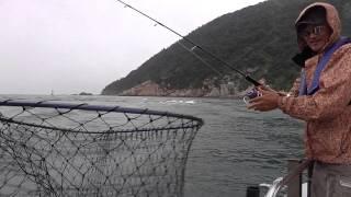 ジギングのヒットシーン 瀬戸内海伊予灘 (スラック&アスナロⅢ)