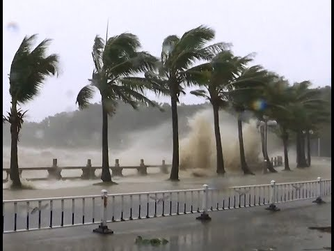 Typhoon Hato Makes Landfall in South China's Guangdong