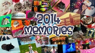 2014 Memories | Montage of Moments Thumbnail