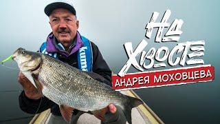 Ловля крупного жереха на железо Рыбалка в тумане НА ХВОСТЕ Андрея Моховцева