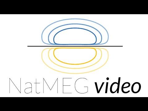 NatMEG lecture: MEG in neurodevelopment research by Caroline Witton