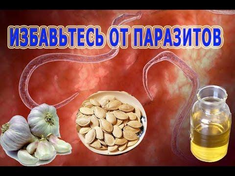 Тыквенное масло от глистов у детей и взрослых