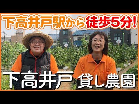 【栽培生活】駅から徒歩5分!下高井戸の懇切丁寧な貸し農園【シェア畑】