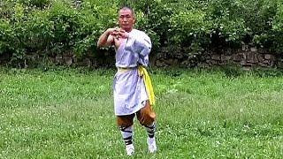 Kung Fu Basic Training