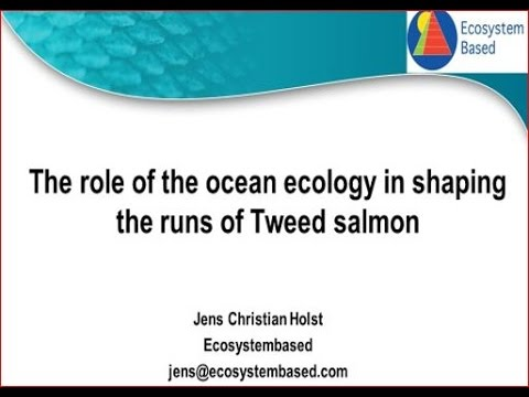 Tweed Salmon and Ocean Ecology